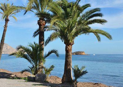 Playa de la Olla Altea