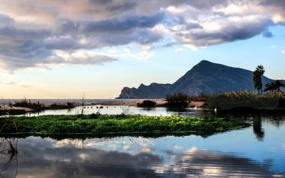 GUIDED TOURS, KNOW ALTEA BETTER