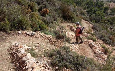 Turismo realiza la adecuación, mejora y ampliación de la red de senderos de Sierra Bernia en el término municipal de Altea